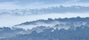 Khao Yai vue tôt le matin du haut de Khao Kaew