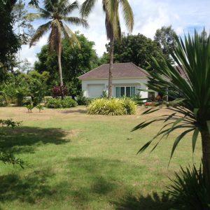 Forest Hill's Garden