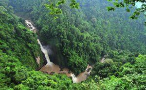 forest Hill - Khao Yai