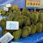 Durian, king of tropical fruits